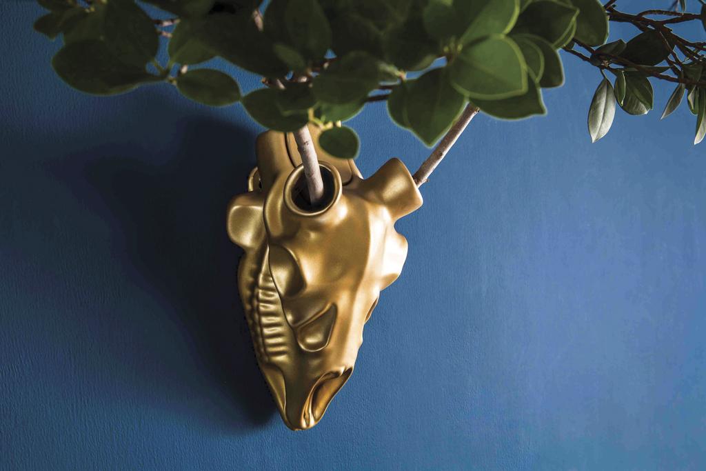 Dear-o'-Deer-Gold