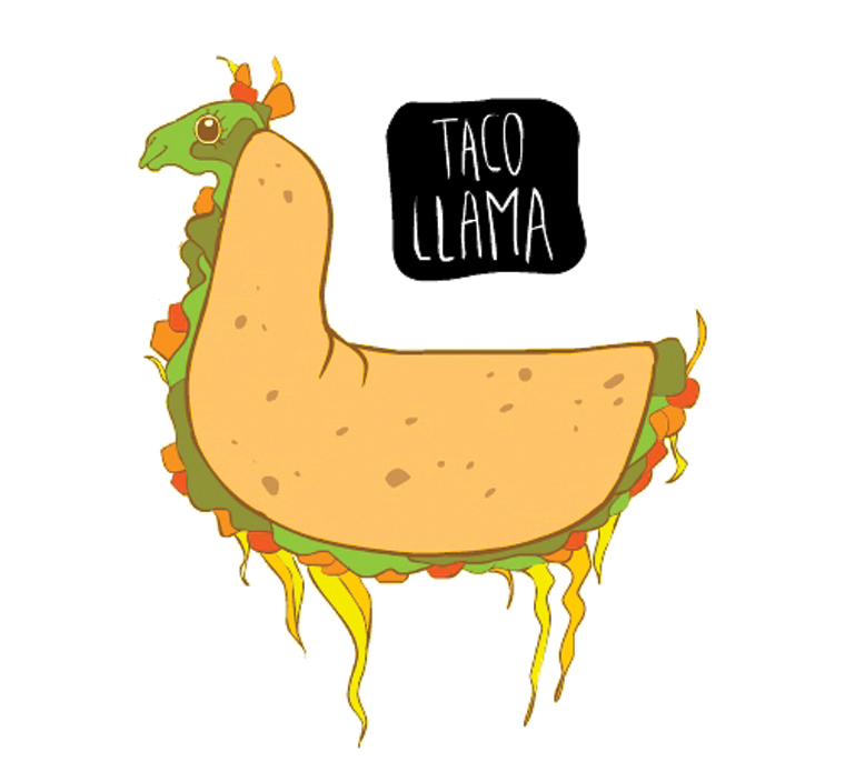 Taco Llama - Food Animal